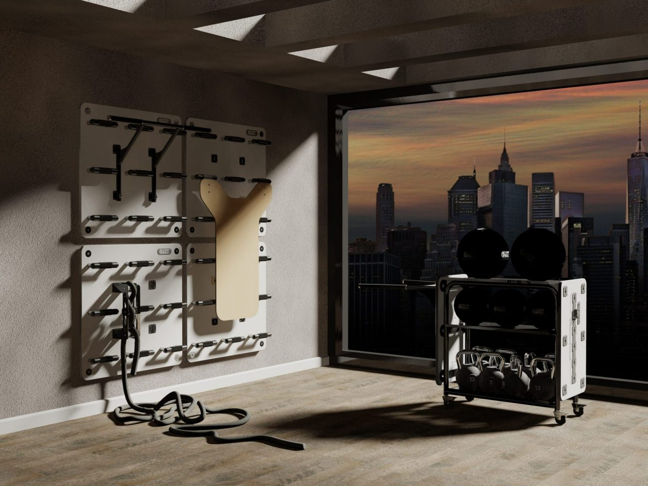 Garage Gym, living room gym